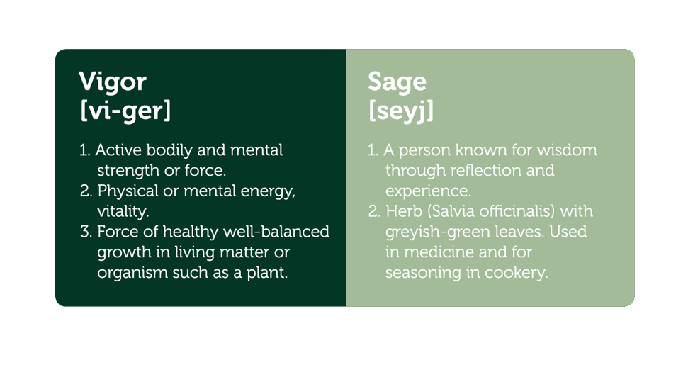 Healthy and natural dog and cat food VIGOR & SAGE