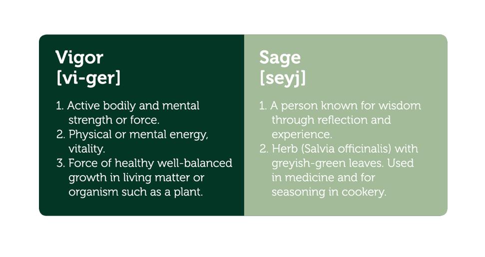 Healthy and natural dog and cat food VIGOR & SAGE