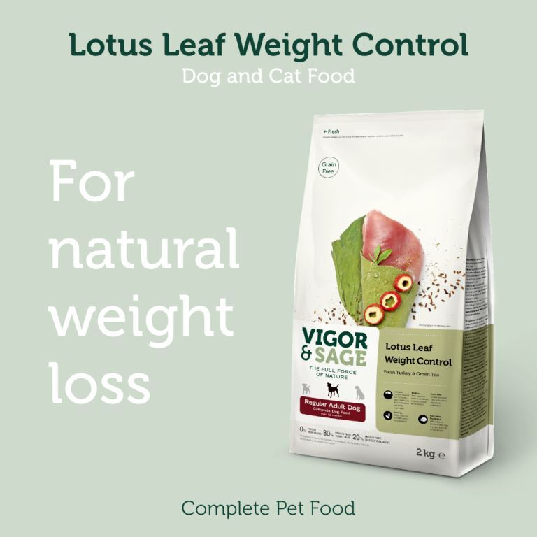 Natural weight loss dog food full of nutrition low on calories